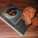 Buchempfehlung Das Löwe Buch 02